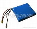 60V 16S1P 2900mAh lithium ion battery