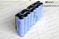 60V Self-balancing Vehicle battery Samsung 18650 batteries 2900mAh