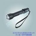 YJ1010固態微型強光防爆電