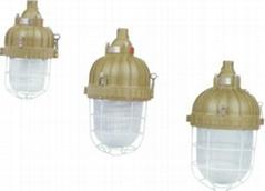 BAD81防爆緊湊型節能燈