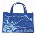 Promotional Bag importer 1