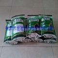 青钱柳嫩叶茶 3