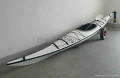 Professional Kayak