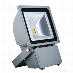 70~100W COB IP65 LED flood light