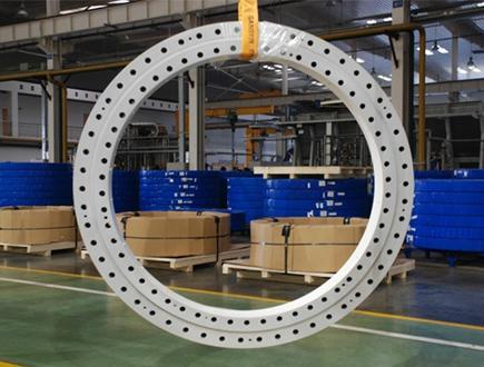 Excavator Slewing Ring bearing 1