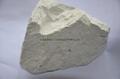 超白高嶺土原礦 2