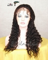 Supply Human Hair Full Lace Wigs from Hair Products Company 3
