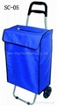 SC-05 Shopping Cart with Bag