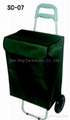 SC-07 Shopping cart with bag