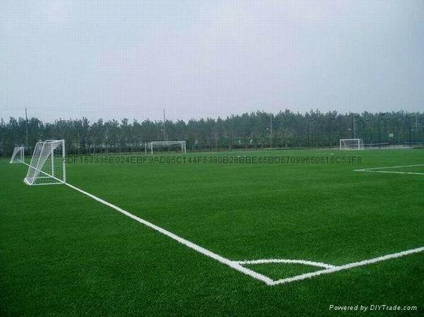 足球场人造草坪 5