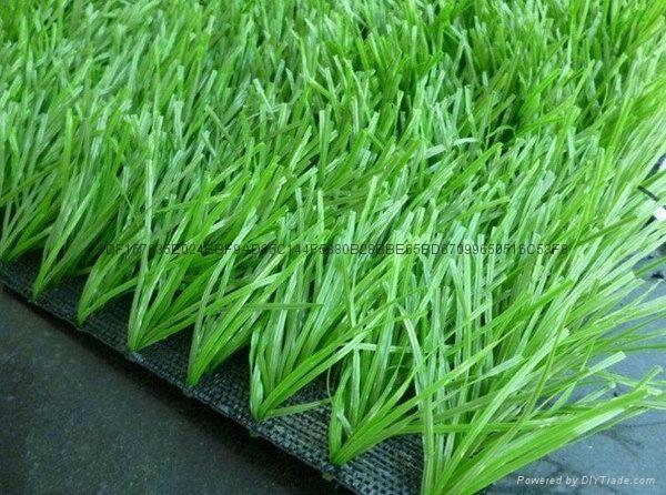 足球场人造草坪 1