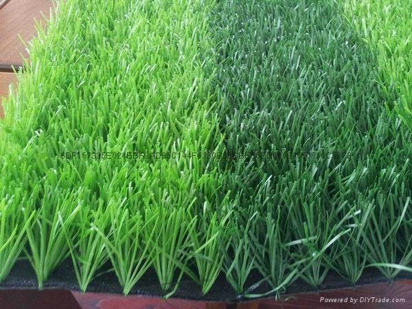 足球場人造草坪 3