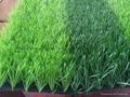 足球场人造草坪 3