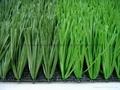 足球场人造草坪 2