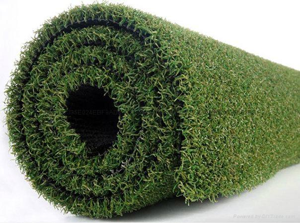 高爾夫果嶺人造草坪 1