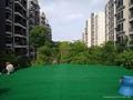 幼儿園人造草坪地毯 5