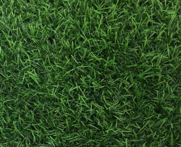 幼儿园仿真草坪人造草坪 2