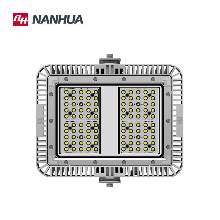 LF30X Series LED Flood light 2