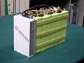 动力锰酸锂充电电池组 1