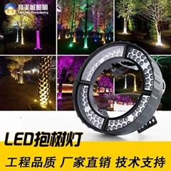 LED照樹燈抱柱燈草坪燈射燈