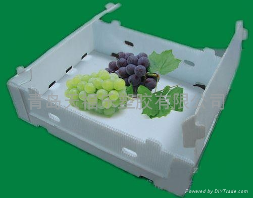葡萄水果包裝箱 3