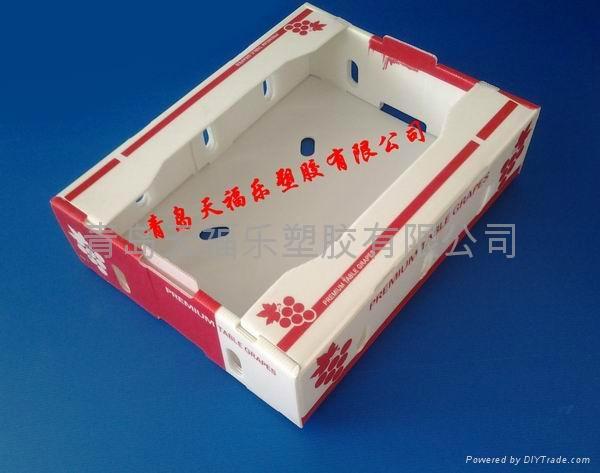 葡萄水果包裝箱 2