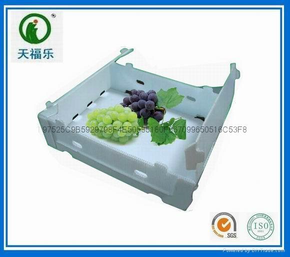 葡萄水果包裝箱 1