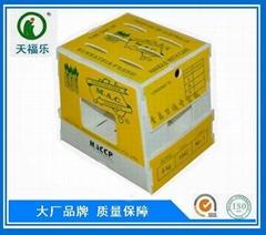 芦笋包装箱