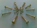 brass bolt 4