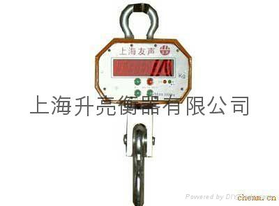 上海友聲電子吊秤 1
