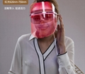 led美容面罩機三色美容儀器光子嫩膚儀 家用光譜儀彩光面罩美容儀 2