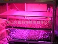 LED組織培養燈