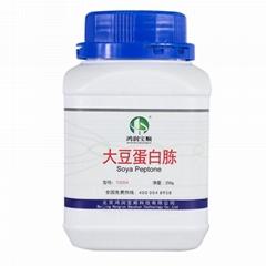 大豆蛋白胨 蛋白培養基