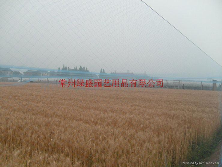 Rice breeding bird net 3