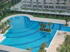 供應漳州泳池設備
