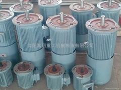 Y132-6E长期堵转力矩电机