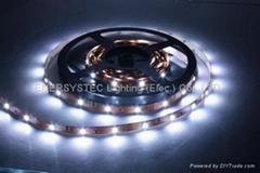 IP68 Strip Light,led strip light,flexible strip light,ip65 strip light