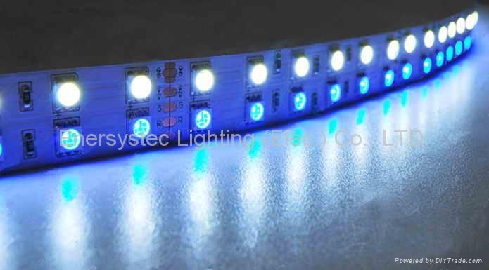 LED strip light,led rope lights,china flexible strip light,cheap led strip light 1
