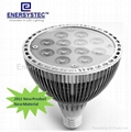LED PAR38 Lights 12W Equivalent 100W