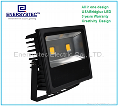 80W LED Floodlight Water