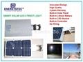 Solar LED Street Light, solar garden