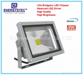 30W LED Floodlights COB Samsung LED Outdoor 100-240v