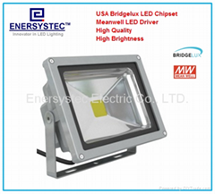30W LED Floodlights COB