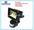 Security LED flood light with PIR sensor