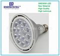 15w PAR38 LED Lights Bulb E27 E26 12W