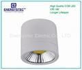 10W LED Downlight COB Down Light 1000LM