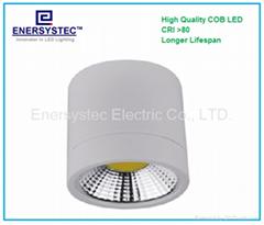 10W LED Downlight COB Down Light 1000LM 100-265V Input For Ceiling Light Fixture