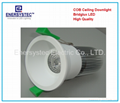 10W LED Down lights 230vac white high power led 100LM, 100W Equivalent