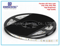 12V LED Strip Light China Manufacturer