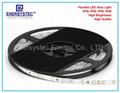 12V LED Strip Light China Manufacturer SMD2835